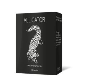 Alligator - có tác dụng gì? Đánh giá