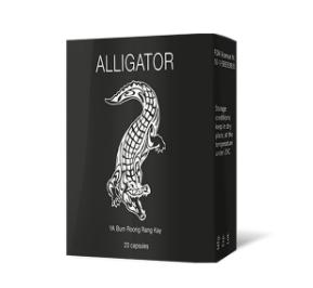 Alligator - mua ở đâu? Có tốt không? Giá bao nhiêu? 2020 - chính hãng