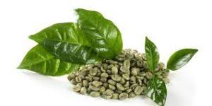 Green Coffee - mua ở đâu? Thuốc bán ở đâu? Có bán ở hiệu thuốc không? Lazada