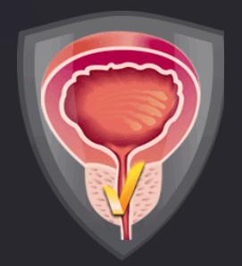 Prostanix - Là thuốc gì? Có hiệu quả không? Original sản phẩm có tốt không?
